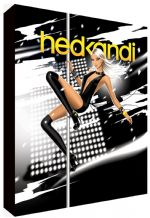Hed Kandi Pole Dancer Canvas Art - NEW - Choose your size - Ready to Hang